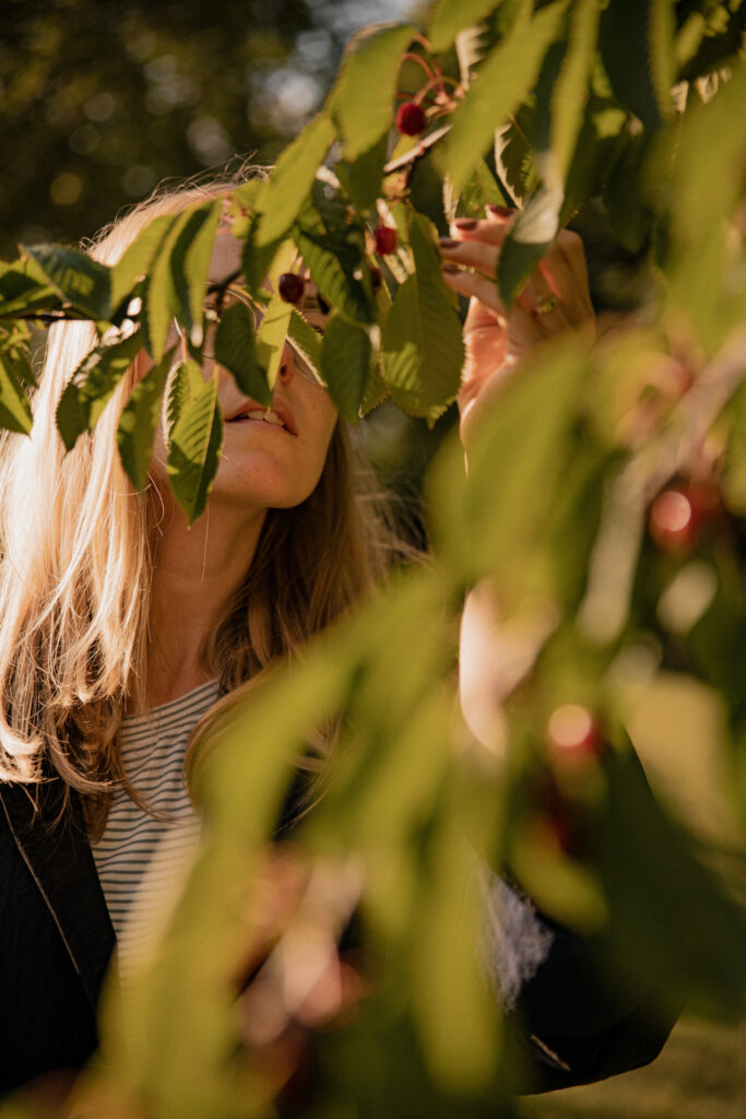 picking cherries on a cherry tree - a part of a fashion editorial